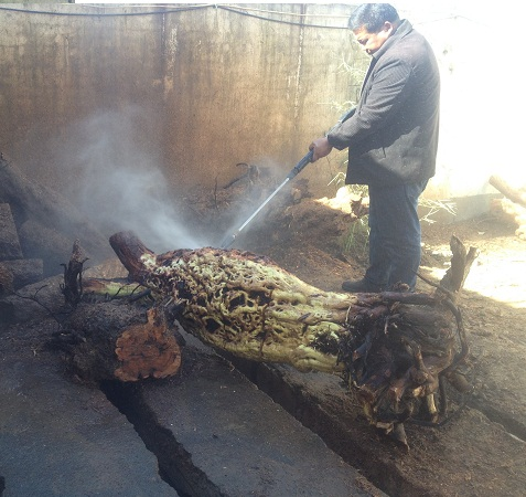 枣树根雕除树皮使用专用高压水枪